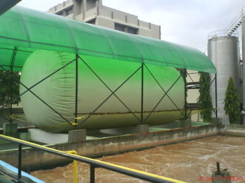 Biogas Storage Balloon